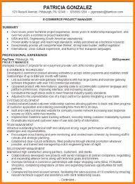 examples of resume summary summary resume examples executive