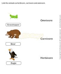 food chain worksheet 14 science worksheets grade 2 worksheets