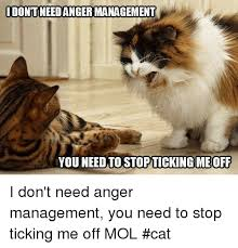 You Need To Stop Meme - idontineed angermanagement you need to stopticking me off i don t