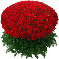 flowers for valentines day flowers delivery valentines day india send s day online