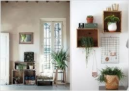 indoor plant display 15 amazing ideas to display your indoor plants architecture design