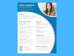 Sample Resume Format Basic by Open Office Resume Template Resume Accessiresumepng Download