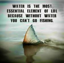 Funny Fish Memes - the most essential element fish fishing meme and fly fishing