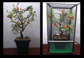 artificial trees for chameleon cages infinity tree chameleon