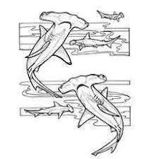 aquarium coloring page scenic coloring pages for adults bing images coloring