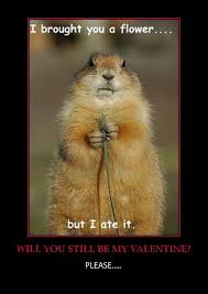 Will You Be My Valentine Meme - will you be my valentine funny quotes wishes for valentine s week