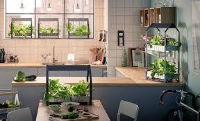 giardini interni casa orto e giardino per interni che passione hello style