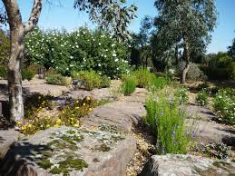 Cranbourne Botanic Gardens Cafe by Walk Walk Melbourne The Australian Garden Cranbourne Royal