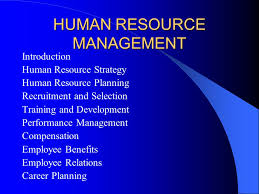 human resource management introduction human resource strategy