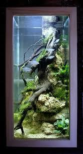 Aquarium Decoration Ideas Freshwater Closeup Of An African Cichlid Aquarium With Manzanita Wood