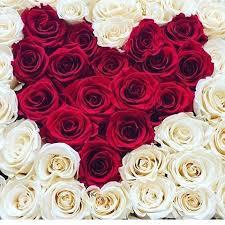 imagenes de feliz inicio de semana con rosas le bouquet lebouquet co instagram photos and videos