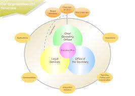 sample organization structure