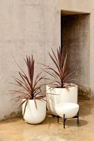 case study cylinder planter with walnut stand case study
