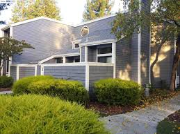 david azimi intero real estate services
