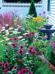 imagenes de jardines pequeños con flores jardineria 5 flores de primavera bellísimas