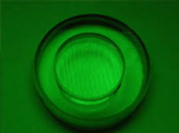 Monochromatic Light Echo Friendly Monochromatic Light Unit Manufacturer Pune India