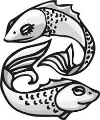 make koi fish drawings your work of art