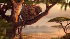 rollin safari what if animals were round youtube
