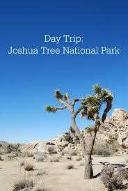 Joshua Tree California Map Top 25 Best Joshua Tree National Park Ideas On Pinterest Joshua
