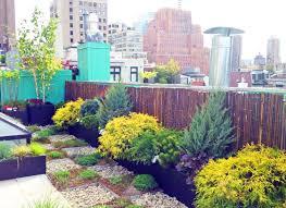 roof garden plants nyc roof garden paver deck terrace sedum trays bamboo fence