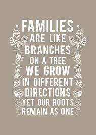 amazing family photo with quote inspiring quotes and words in