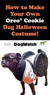 Dog Halloween Costumes Lucy U0027s Oreo Cookie Dog Halloween Costume
