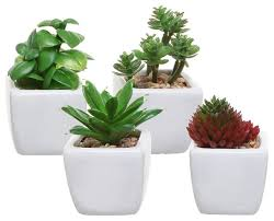 small artificial succulent plants in white ceramic cube planter