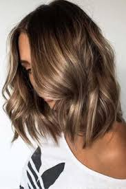hair color 201 hair color 2017 2018 27 light brown hair colors that will take