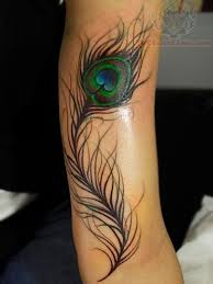 collection of 25 peacock feather tattoo