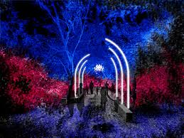 enchanted forest of light tickets descanso gardens announces enchanted forest of light san marino