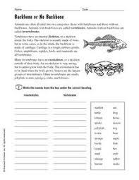 free printable worksheets vertebrates invertebrates vertebrates and invertebrates worksheets grade 6 education