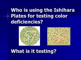 Blue Yellow Color Blind Test Free Color Vision Testing