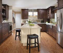 Types Of Kitchen Cabinet Cabinet Wood Types Style Ideas Photo Gallery Masterbrand
