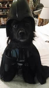 Halloween Costumes Darth Vader Star Wars Darth Vader Dog Halloween Costume Shipping