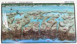 Roatan Map Seven Of Our Favorite Dive Sites In Roatan Reefdivers Io