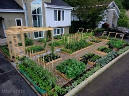 Garden Pics Ideas Backyard Vegetable Garden Design Ideas Kitchen Garden Ideas