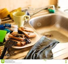 cuisiner le gardon pile sale de cuisine des plats dégoûtants infestés avec des