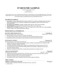 Sample It Professional Resume by Professional It Resume Samples Resume Templates Download