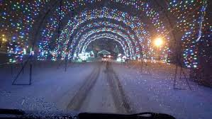 hamburg festival of lights festival of lights is best winter lights display in buffalo