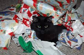 cat wrapping paper top 10 cats with wrapping paper