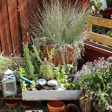 Galvanized Containers For Gardening How To Create Beautiful Yard Vignettes With Small Container Gardening