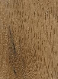 live oak the wood database lumber identification hardwood