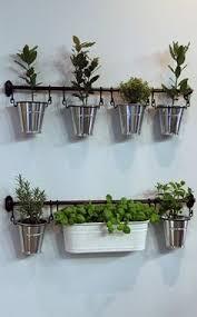 the 25 best hanging herbs ideas on pinterest herb garden indoor