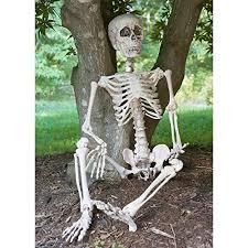 posable skeleton prextex 4 posable skeleton