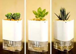 self watering plants self watering modular and magnetic connect a pot planters