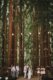 redwood forest wedding venue forest wedding venues b66 in pictures gallery m53 with forest