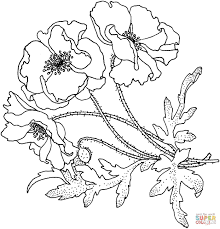 dead flower coloring page awesome day the dead coloring pages free free coloring pages download
