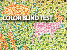 Test To See If You Are Color Blind Different Types Of Eye Tests Lenspick