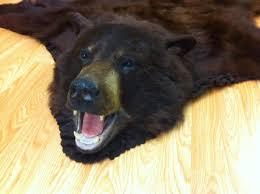 Polar Bear Fur Rug Fur Rugs Archives