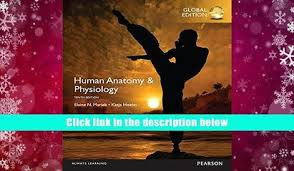 Human Anatomy And Physiology Books Audiobook Human Anatomy Physiology Books A La Carte Edition